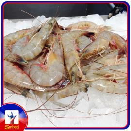Fresh shrimp per kilo